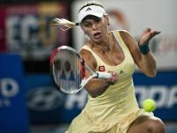 https://t9.pixhost.to/thumbs/704/41737136_caroline-wozniacki-singles-match-during-day-three-of-the-2012-hopman-cup-028.jpg
