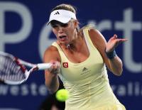 https://t9.pixhost.to/thumbs/704/41737142_caroline-wozniacki-singles-match-during-day-three-of-the-2012-hopman-cup-029.jpg