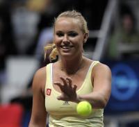 https://t9.pixhost.to/thumbs/705/41751116_caroline-wozniacki-charity-exhibition-tennis-match-in-bratislava-21-november01.jpg